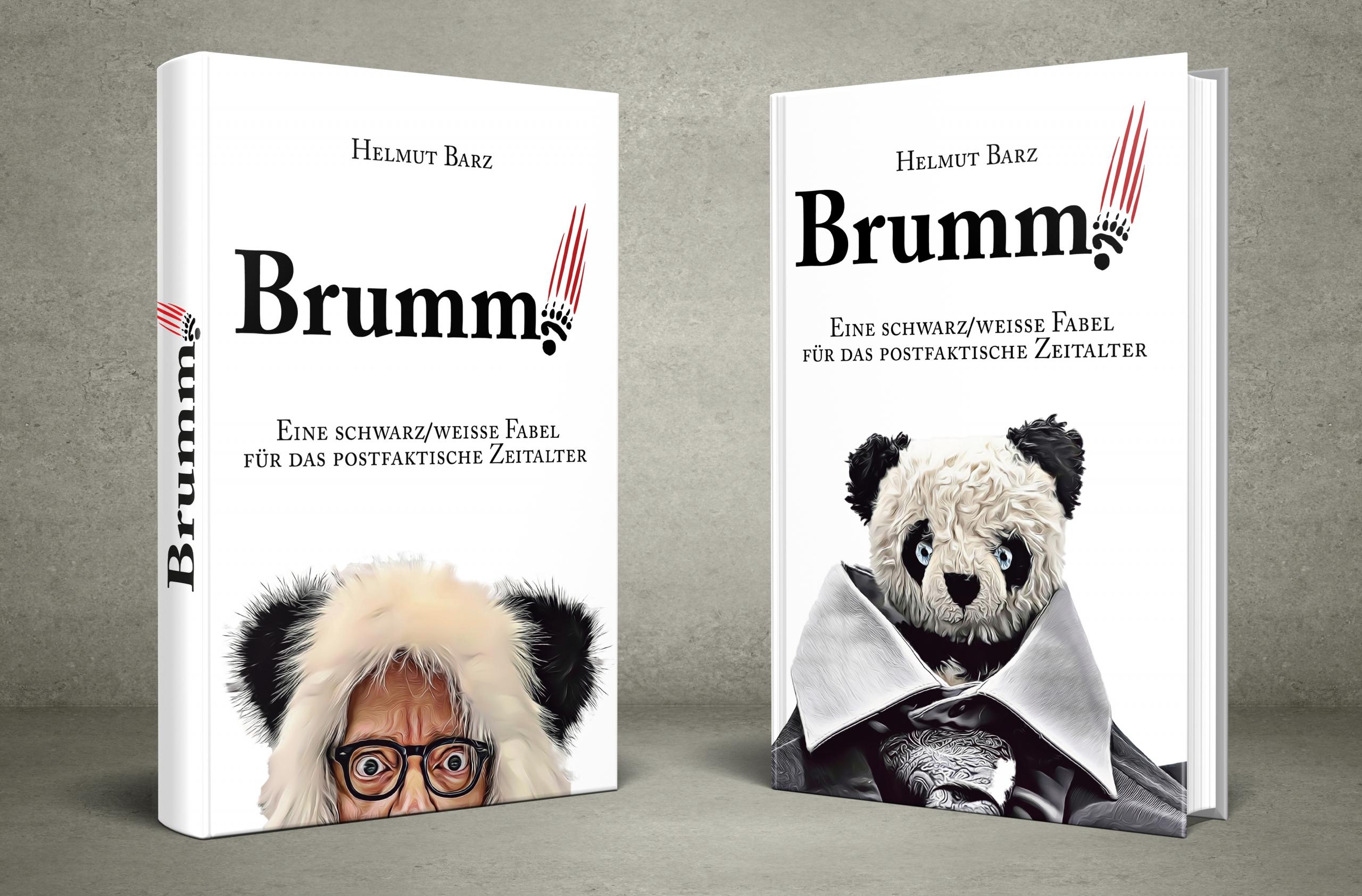 Brumm Cover Entwuerfe